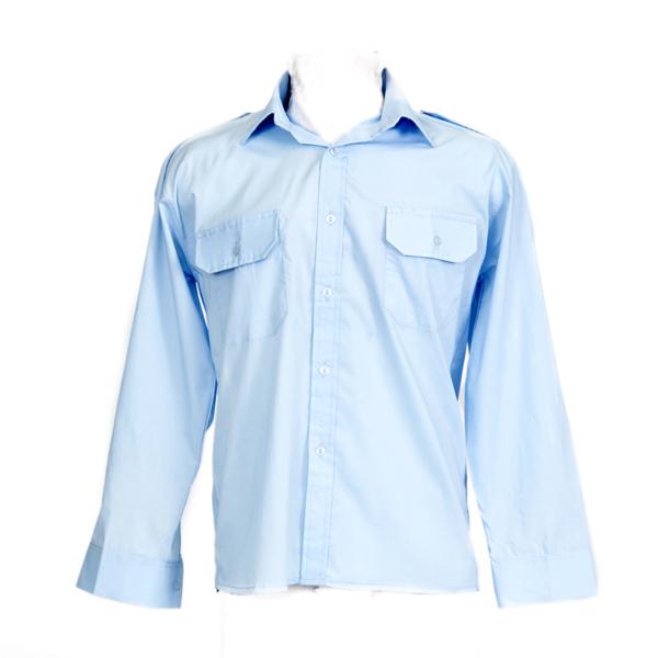 Blue Long Sleeve Roasied Neck Shirt